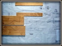 Plan budowy gitary FENDER TELECASTER THINLINE 69