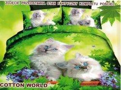 Pościel 3D Kotki 160x200 Cotton World 100% mikrowłókno