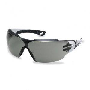 Okulary ochronne Pheos Cx2 9198.237