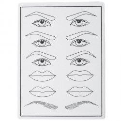 Übungshaut / Vorlage für Übungen /Augenbrauen Schablonen