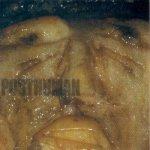 Posthuman - Posthuman (CD)