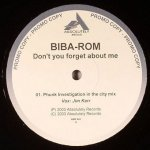 Biba-Rom - Don't You Forget About Me (12'')