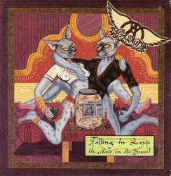 Aerosmith - Falling In Love (Is Hard On The Knees) (Maxi-CD)