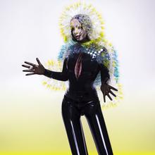 Björk - Vulnicura (CD)