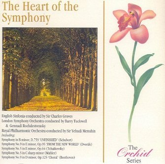 Schubert, Tchaikovsky, Mahler, Beethoven, Dvořák, Berlioz - The Heart Of Symphony (CD)