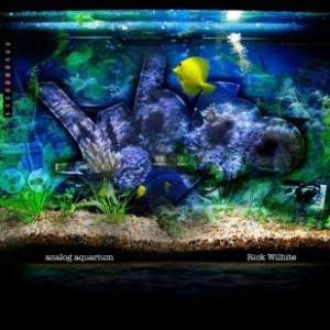 Rick The Godson Wilhite - Analog Aquarium (CD)