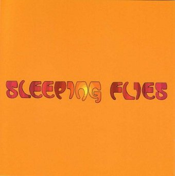 Sleeping Flies - You Are Superior (CD)