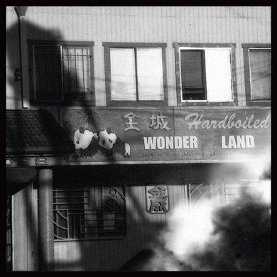 Vijay Anderson - Hard-Boiled Wonderland (CD)