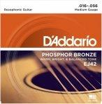 D'Addario EJ42 - Phosphor Bronze Resophonic 16-56