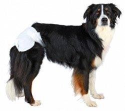 TX-23636 Pieluchy dla psa XL 12szt