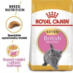 Royal Canin Feline Kitten British Shorthair 10kg