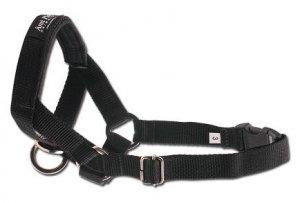 Amiplay Halter XL N5 Rotweiller czarny