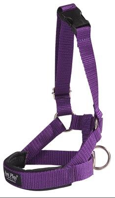 Amiplay Halter XS N1 Yorkshire Terrier fioletowy