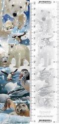 Zakładka 3D Arktyka