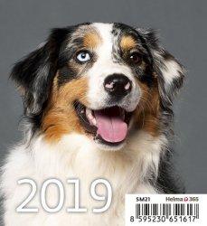 Kalendarz biurkowy Mini Pieski 2019 10 sztuk