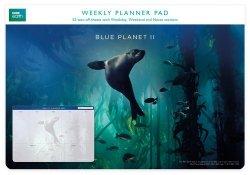 Planer tygodniowy Galapagos Sea Lion