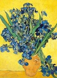 Karnet B6 z kopertą Irises