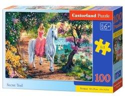Puzzle Secret Trail 100