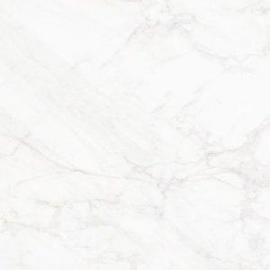 Frost White Poler 59,7x59,7