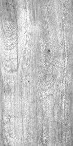 Foresta Grigio 30x60