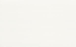 PS201 White 25x40