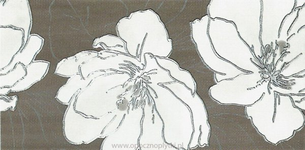 Dekor Ashen 1 29,8x59,8