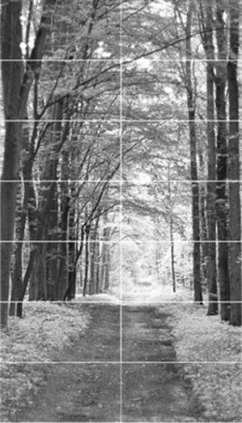 All in White 2 Obraz 14-elementowy 14x29,8x59,8 ( 1198x2098)