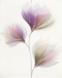 CERSANIT loris white inserto flower 40x50 g1 szt