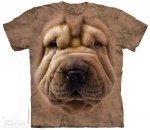 Big Face Shar Pei Puppy - The Mountain