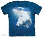 Polar Bear Dive - The Mountain