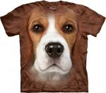 Beagle Face - The Mountain