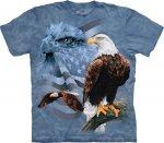 Faded Flag & Eagles - The Mountain