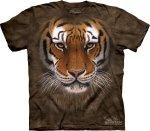 Tiger Warrior  - The Mountain