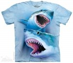 Great White Sharks - T-shirt The Mountain