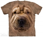 Big Face Shar Pei Puppy - The Mountain
