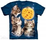 Three Kitten Cheese Moon - The Mountain