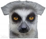 Big Face Ring Tailed Lemur - The Mountain