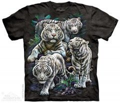 Majestic White Tigers - The Mountain