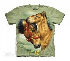Meadow Horses - The Mountain Junior