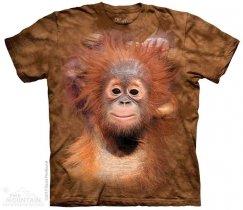 Orangutan Hang - The Mountain