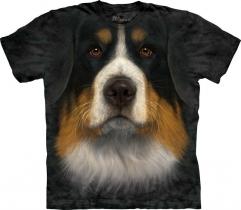 Bernese Mountain Dog Face - The Mountain