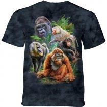 Primates Collage - The Mountain