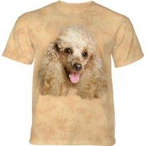 Happy Poodle Portrait - The Mountain
