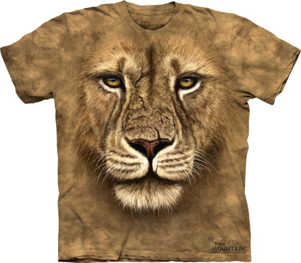 Lion Warrior  - The Mountain
