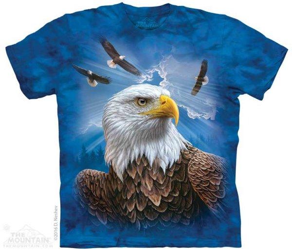 Guardian Eagle - The Mountain