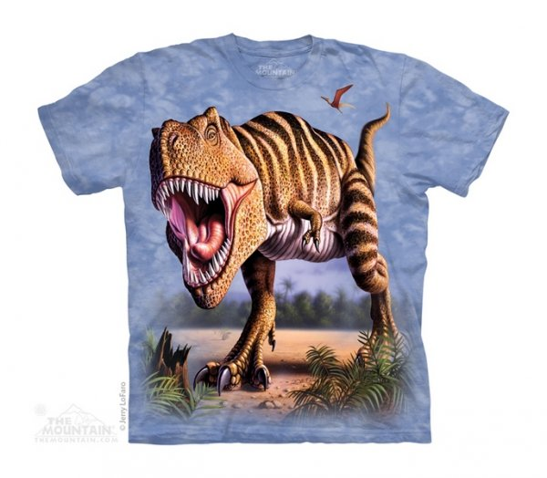 Striped Rex - The Mountain Junior