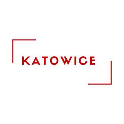 Kurs Kierownika Wypoczynku - Katowice 08.05.2021
