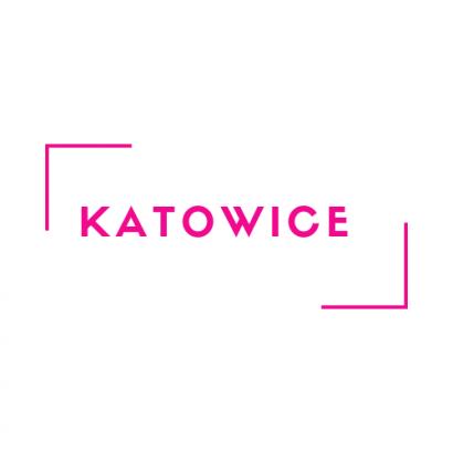 Kurs animacji przedszkolnej i żłobkowej - Katowice (24.11.2019)