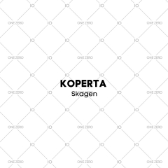 koperta stalowa Skagen