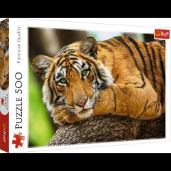 Puzzle Portret Tygrysa 500 el. Trefl 37397